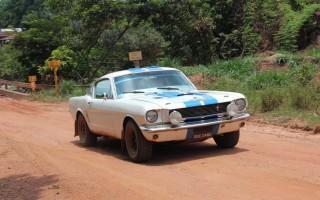 1354776_Mustang.RESIZE