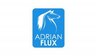 AF-logo-white-on-blue-blue